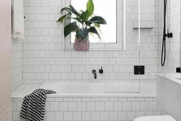 浴缸可以和淋浴装在一起吗
