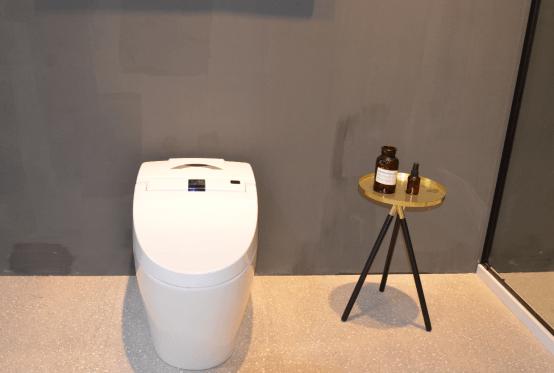 世界厕所日:金柏丽雅用科技创新让如厕更智能健康(1)372.png