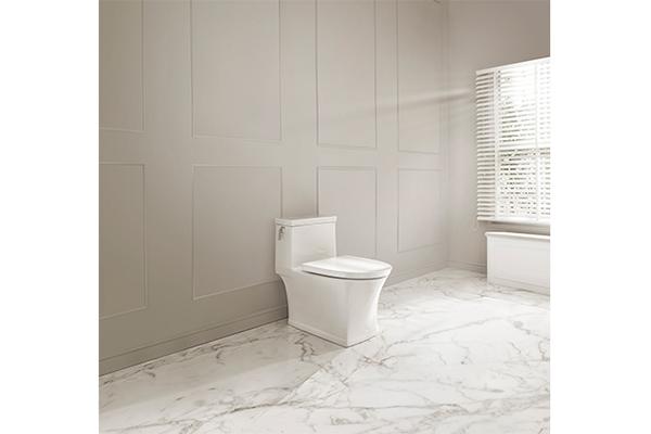 美标卡斯图3.8升双冲净连体座厕.jpg